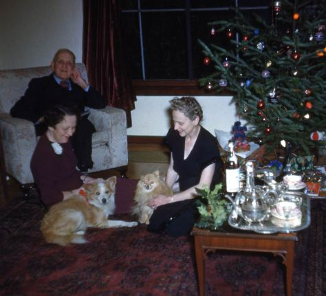Another Sykes home view, this time with two dogs and a Christmas Tea  - with eggnog or rum – and unidentified friends.  Horace's wife Elizabeth is on the right.