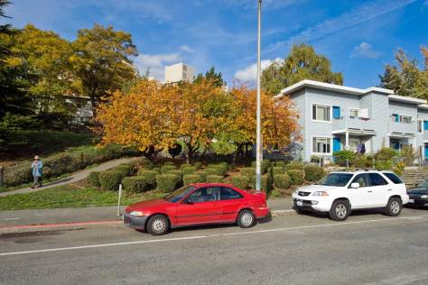 NOW: With the Seattle Freeway ditch behind and below him Jean Sherrard records a portion of the well designed, maintained and landscaped Yesler Terrace.