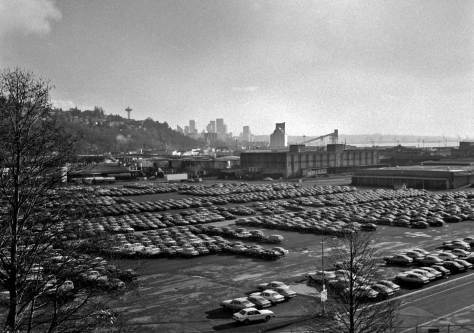 Frank Shaw looks over the fleet of fresh Japanese autos and south through Smith Cove to the city skyline on Dec. 22, 1979.