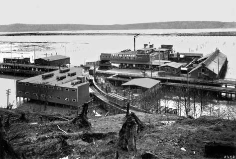 The Frye Packing Plant at the same location but still held on pilings above the tidelands.  Courtesy, Lawton Gowey