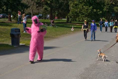 A pink gorilla with admiring dog