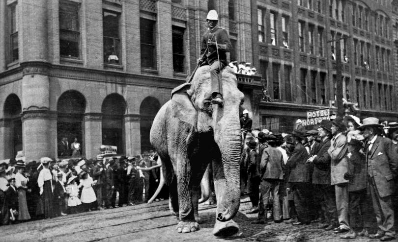 "THEN: Thanks to Seattle Public Library's ""Seattle Room"" librarian Jeannette Voiland for encouraging me to treat this Pioneer Square parade as part of the 1912 Golden Potlatch Parade. I'm convinced."