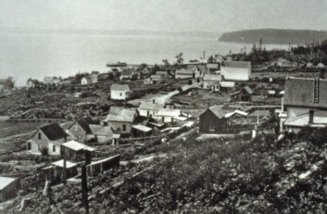 Watkin's 1882 look into Belltown from the western slope of Denny Hill.  The southwest corner of First (Front) and Bell, is far left.
