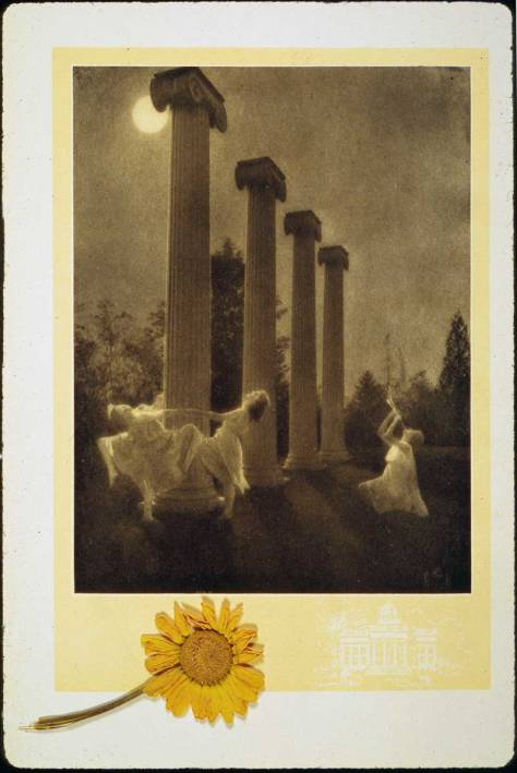 . . . and the front side of the landmark columns, seen here rarely at night within the Sylvan Theater and with a few of its Attic goings-on rarely seen by the light of the sun.