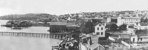 Watkins was visiting from California.  Peterson, the photographer of this look up the waterfront, also from the King Street coal wharf, had a studio in Seattle.  Most of its was portrait work, but his art for cityscape was hereabouts the best of the time.   This is tentatively dated ca. 1882.  The wharf building commotion in the Watkin's pan has as yet not begun.