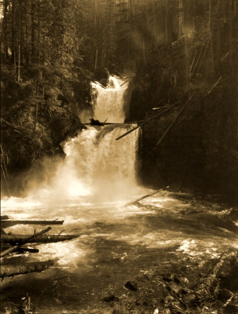 """The """"actual"""" or namesake Cedar Falls were upstream from City Light's generator plant and downstream from its dam."""