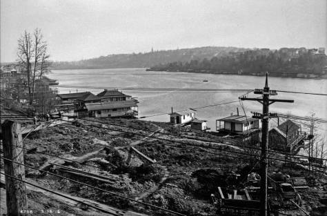 Portage-Bay-North-Short-looking-southeast-WEB
