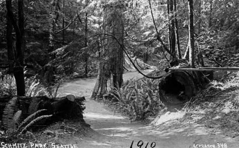 1.-Schmitz-Park,-1910--by-Frasch,--maslanWEB