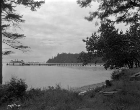 Lincoln Park beyond the Fauntleroy Ferry Landing by A. Curtis.