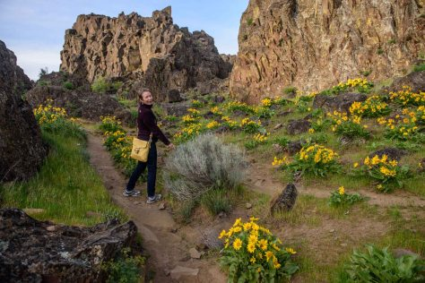 Flowers in the box canyons of Horse Thief Butte.