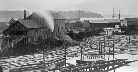 """Most likely another Peterson & Bros shot from their studio window. The mill has been rebuilt and the sheds proliferate. The subject is """"conventionally"""" dated 1884, five years before it all be destroyed by the Great Fire` of June 6, 1889."""