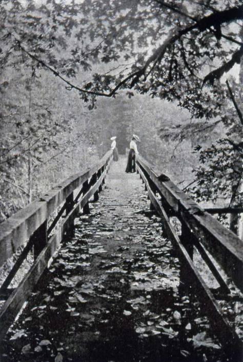 One of Ravenna Park's timber trestles.