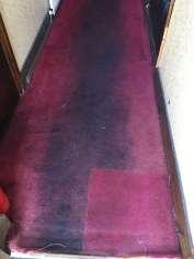 Greasy Carpet Clean (before)