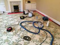 Stain removal wool rug