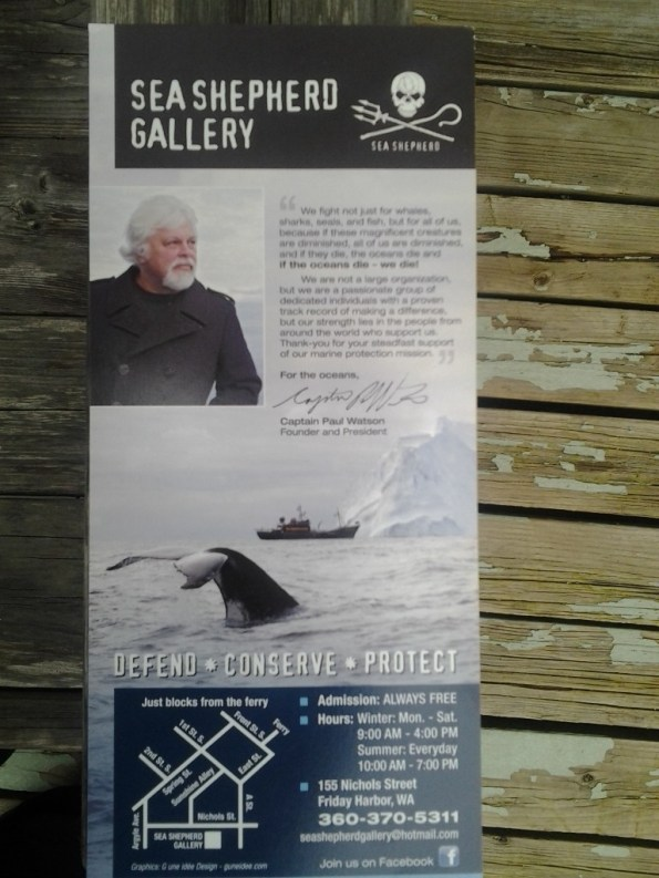 Sea Shepherds Pamphlet Front
