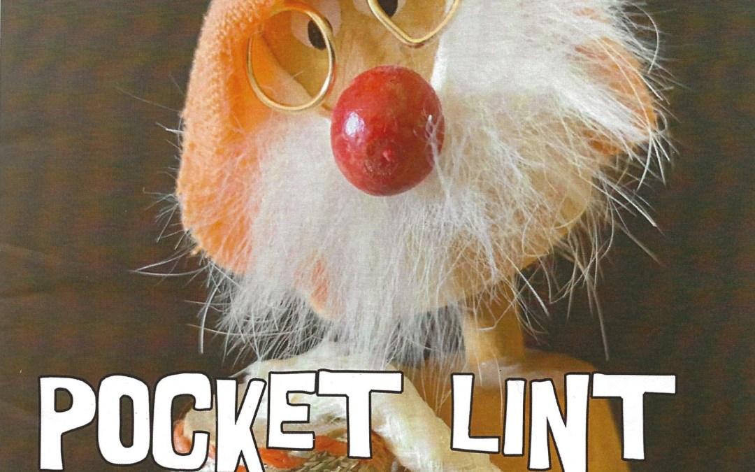 Pocket Lint (A New Journal)