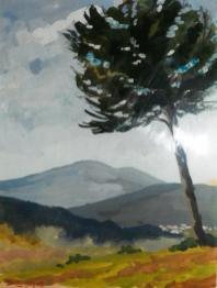 Autour de Roquebrune sur Argens - 83