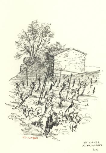 Les Vignes au Printemps - 2003