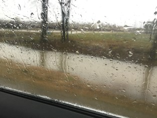 flooded ditches