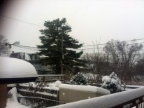 Winter is beautiful but long.