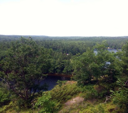 View from the Cliff Top Trail