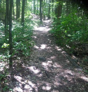Cliff Top Trail