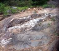 Quartz seams in the rock on the Cliff Top Trail