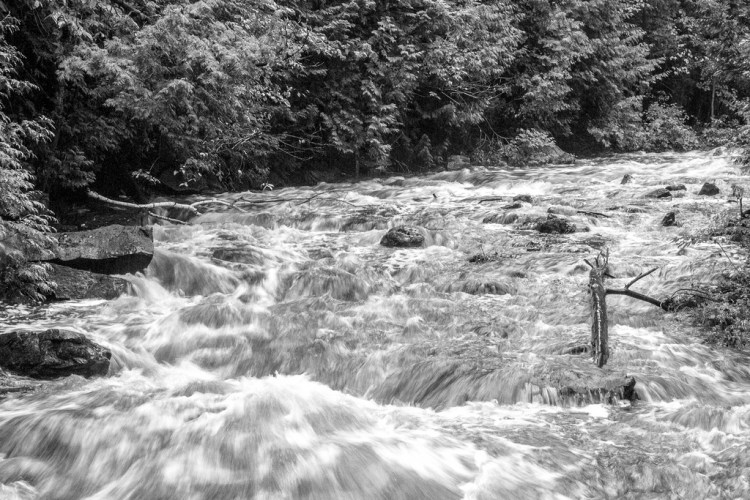 West Credit River in full flow