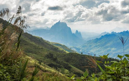 Sattes Grün in der unsäglich schönen Bergwelt von Laos