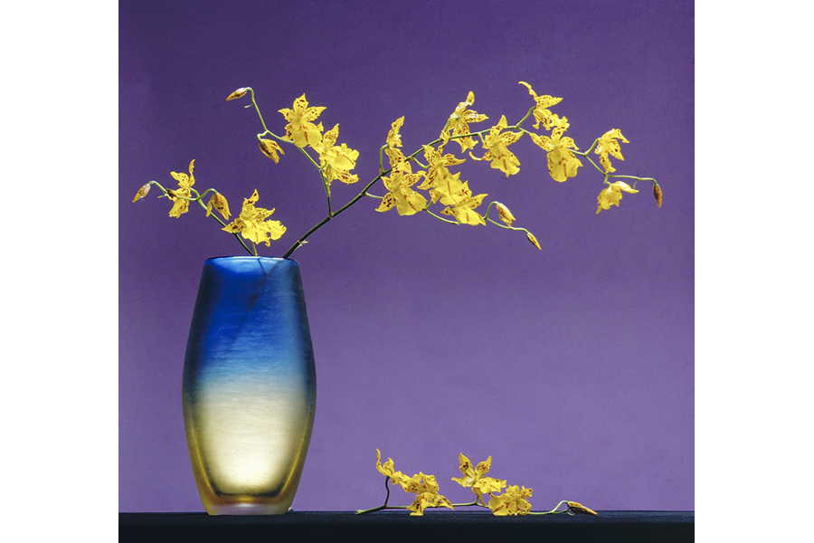 25 useful tips to make a good still life