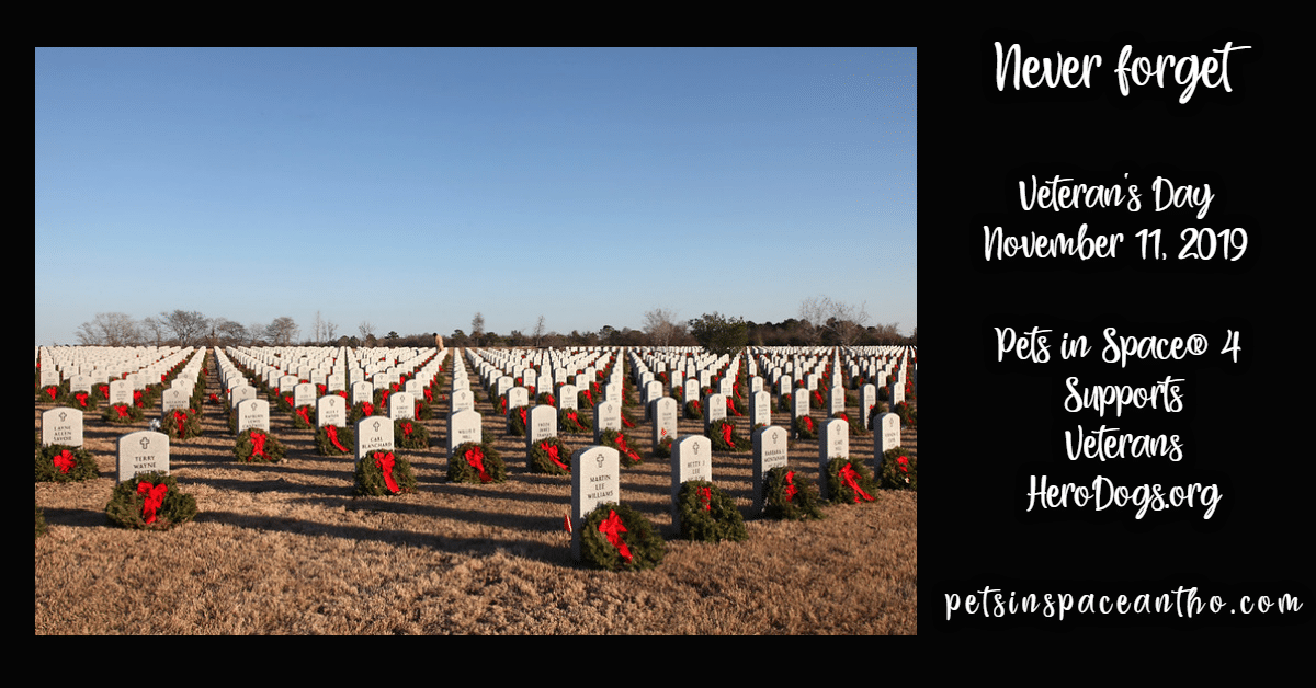 cemetery - never forget