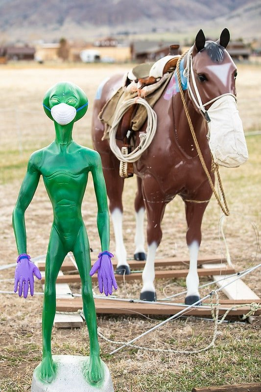 alien and horse in masks