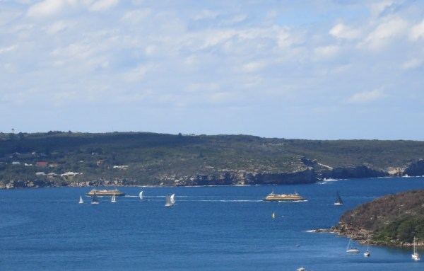 Manly ferries about to cross.