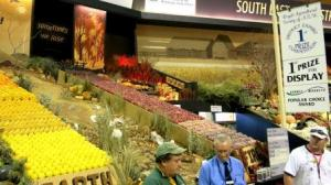 Easter Show 028