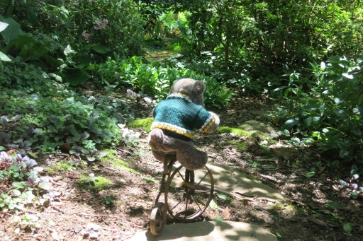 Bear on bike path