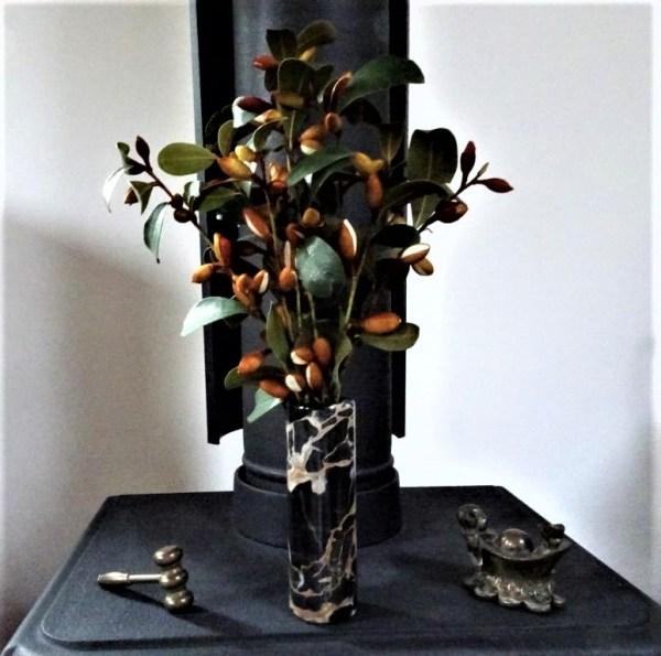Michelia buds