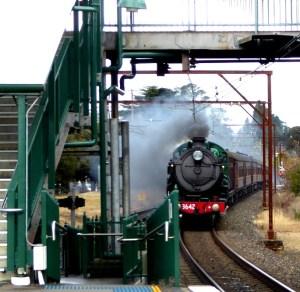 Steam train roars past Blackheath Station.