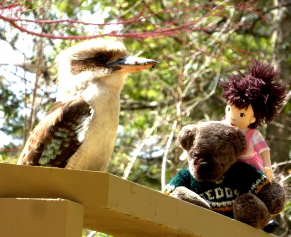 Kookaburrra with Editor Des and Milly