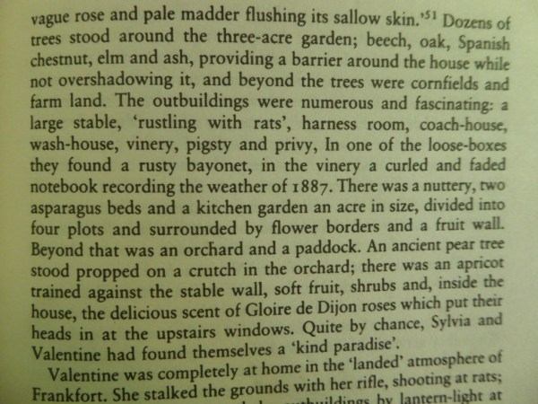 Extract from Claire Harman's biography of Sylvia Townsend Warner.