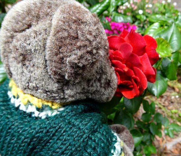 Editor Des smelling Hot Chocolate rose.