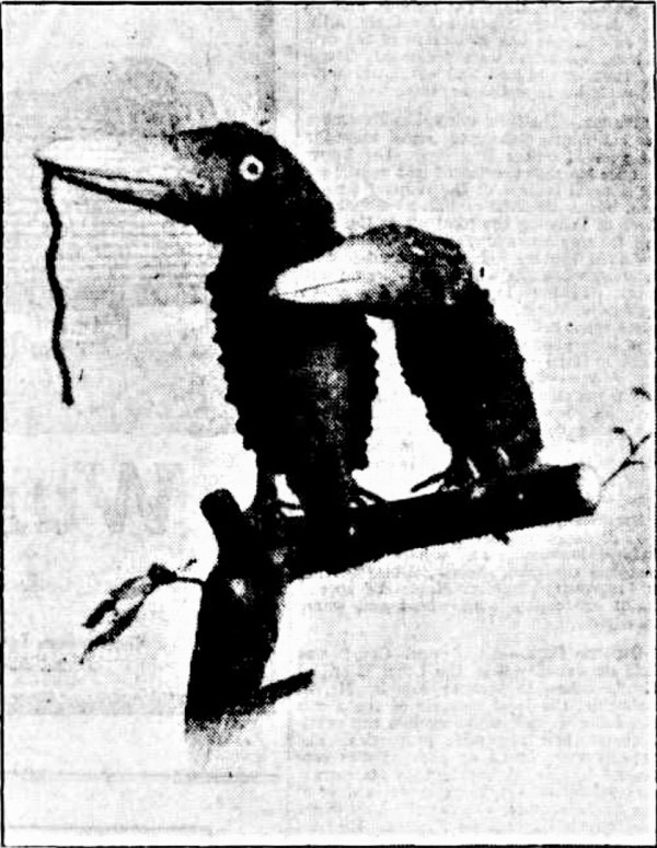 Banksia birds