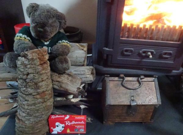 Baksia serrata log for the fire.