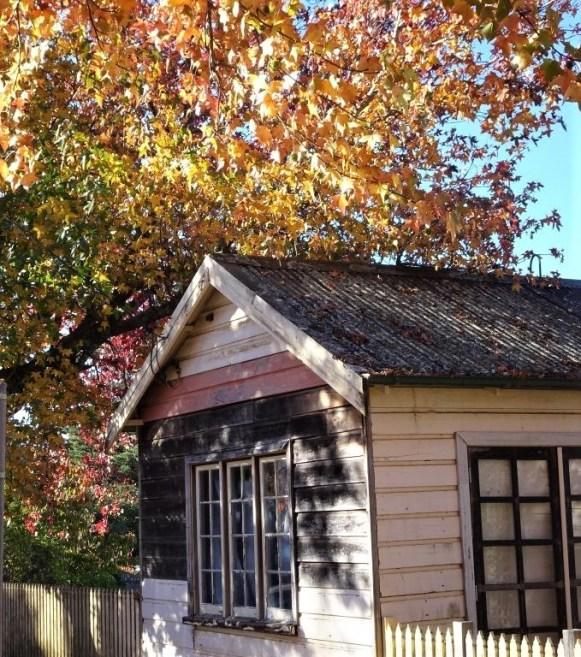 Cottage in Blackheath during autumn