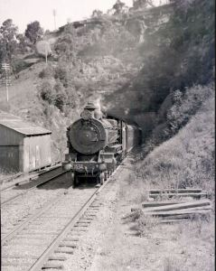 Steam train in the Blue Mountains