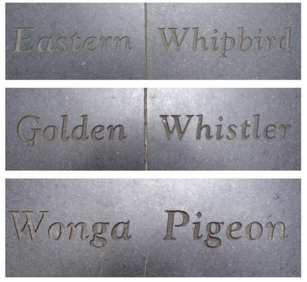 Bird memorials Angl Place Sydney.