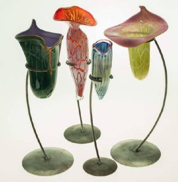 Pitcher plants by artist Keith Rowe of Blackheath.