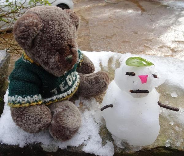 Fun in the snow for Editor Des.