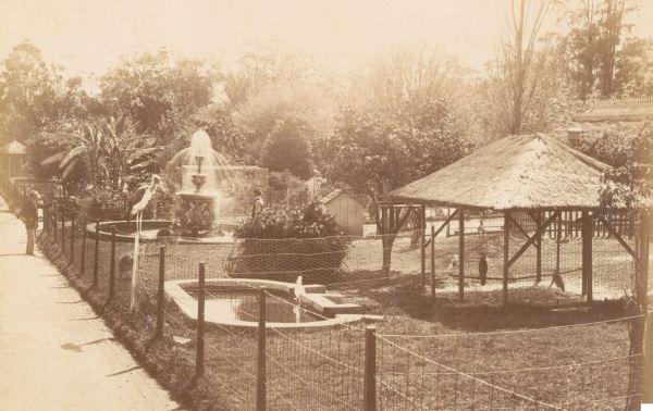 Aviary Paddock, Sydney Botanic Gardens