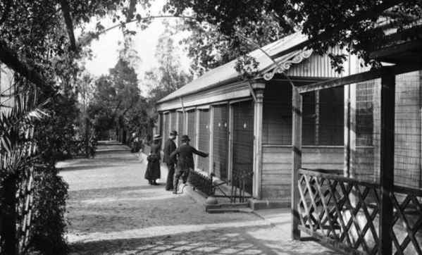 The aviary at Sydney Botanic Garden