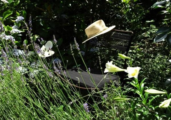 A fragrant garden seat.